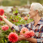 5 Reasons Older Adults Should Consider Gardening