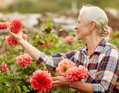 5 Reasons Seniors Should Take Up Gardening in Winnipeg, MB
