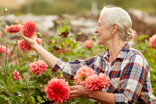 5 Reasons Seniors Should Take Up Gardening in Winnipeg, MB