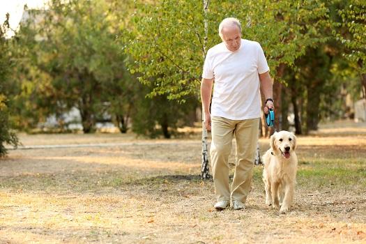 How to Avoid Parkinson's Naturally in Winnipeg, MB