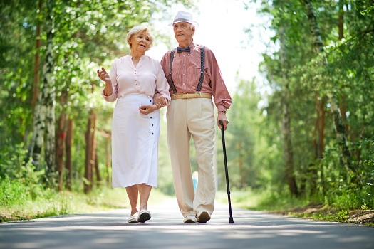 Things Older Adults Can Do to Increase Their Mobility in Winnipeg, MB